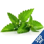 200 ml Liquid MixPack Menthol - 0/3/6/9/12 mg/ml ***GROSSPACKUNG***